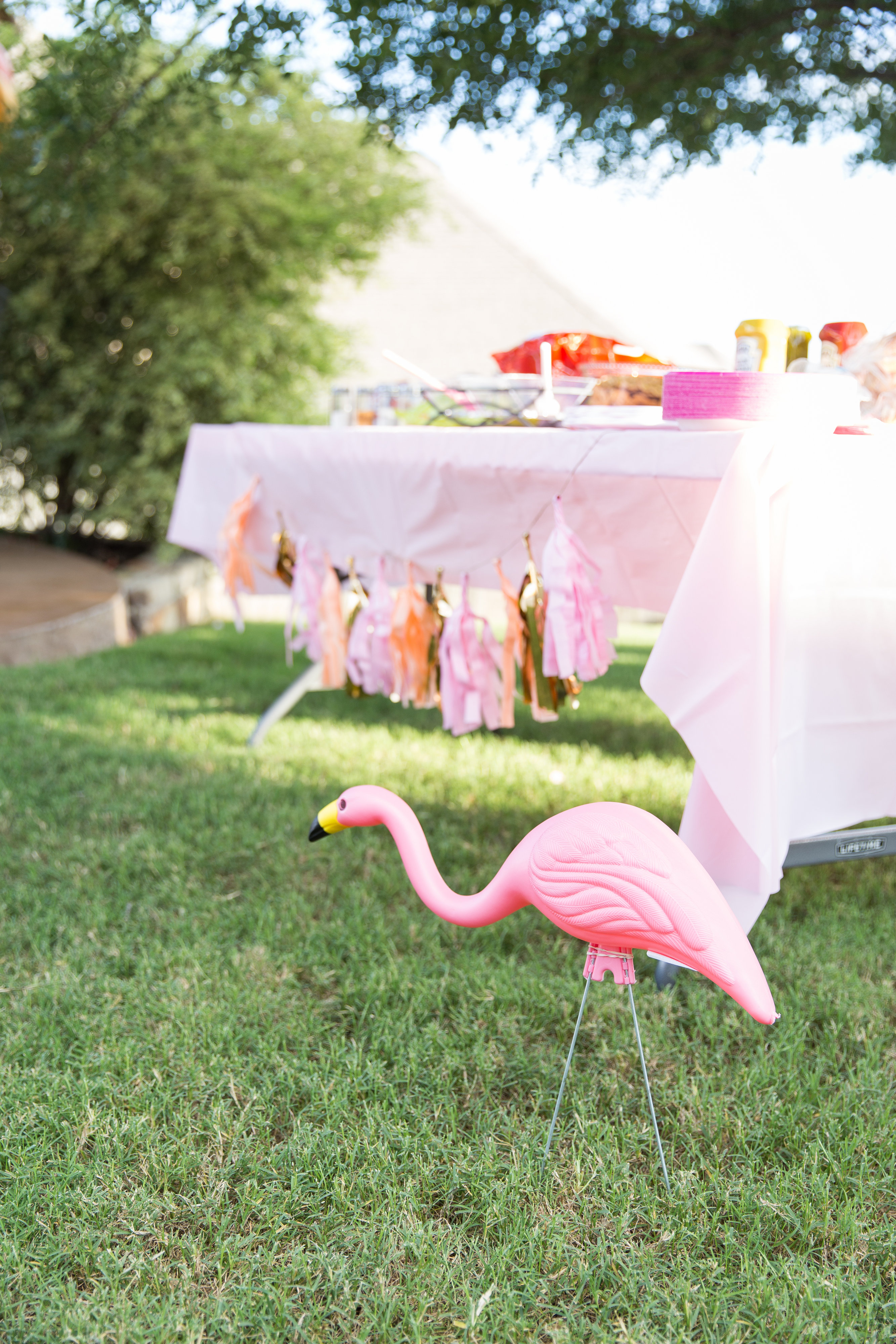 View More: http://margodawnphotography.pass.us/flamingo-fling