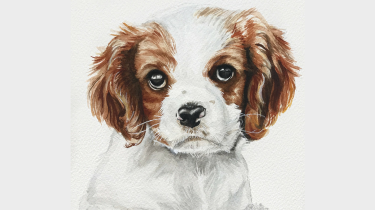 Celebrating National Puppy Day with a Pet Portrait