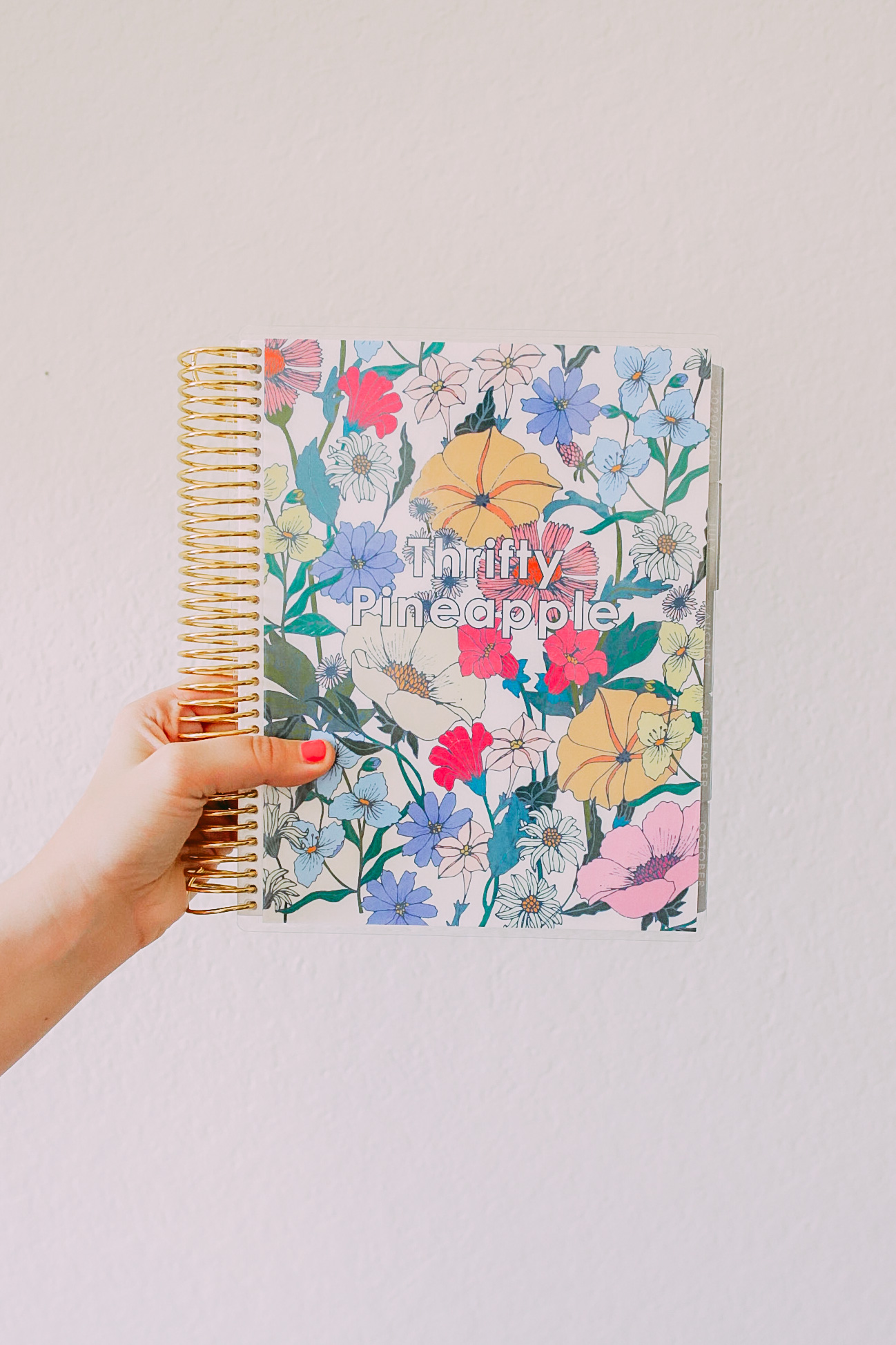 LAUNCH DAY: Erin Condren 2020-2021 LifePlanner + GIVEAWAY